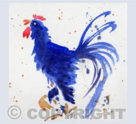 Blue Speckled Cockerel