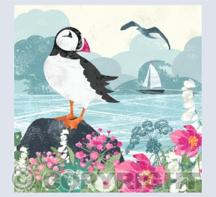The Puffin & The Yacht (square card)