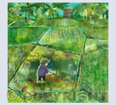 Patchwork Paddyfield