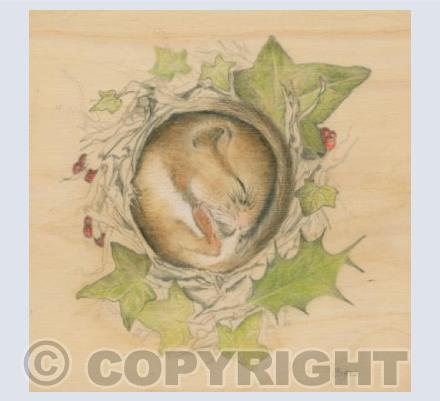 Yuletide Dormouse
