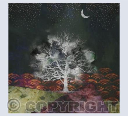 Oak tree and the moon