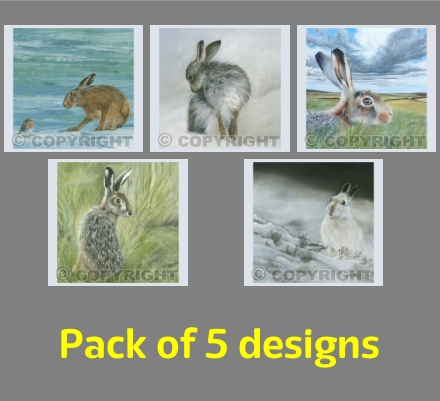 Hare Paintings