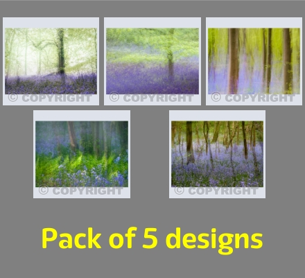 Bluebell Impressions Pack