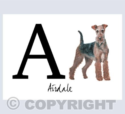 A to Z of Dogs