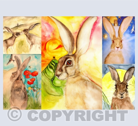 HARES in WATERCOLOUR