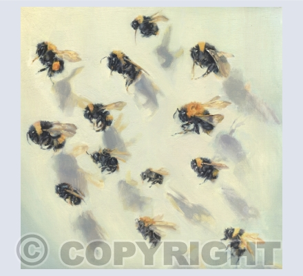 Telling Bees